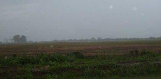 lluvia, clima, campo