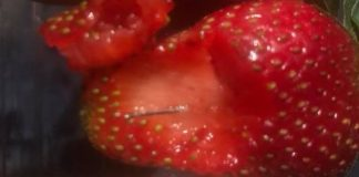 frutillas