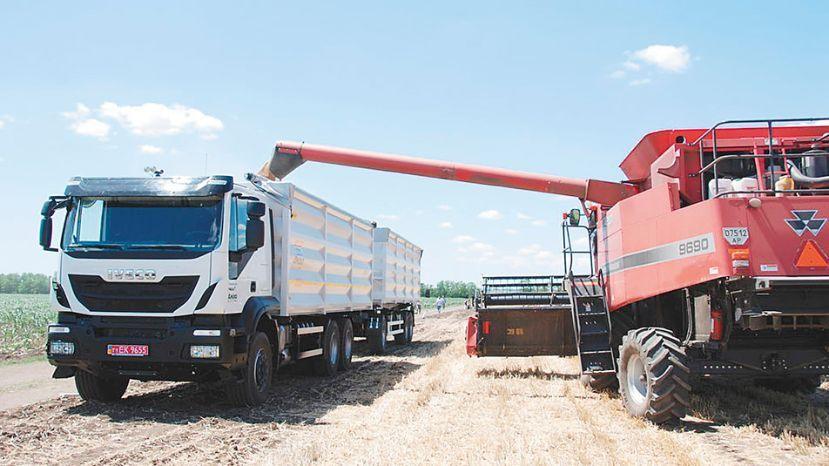 granos, transporte, camion