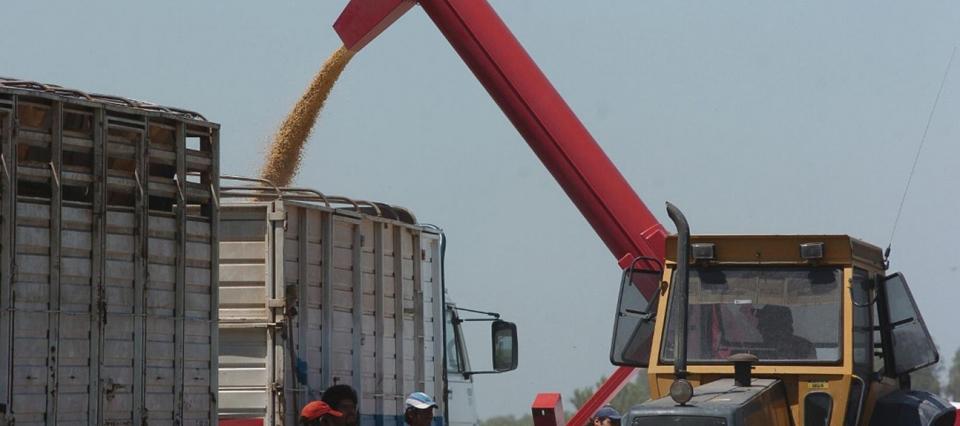 transporte, granos