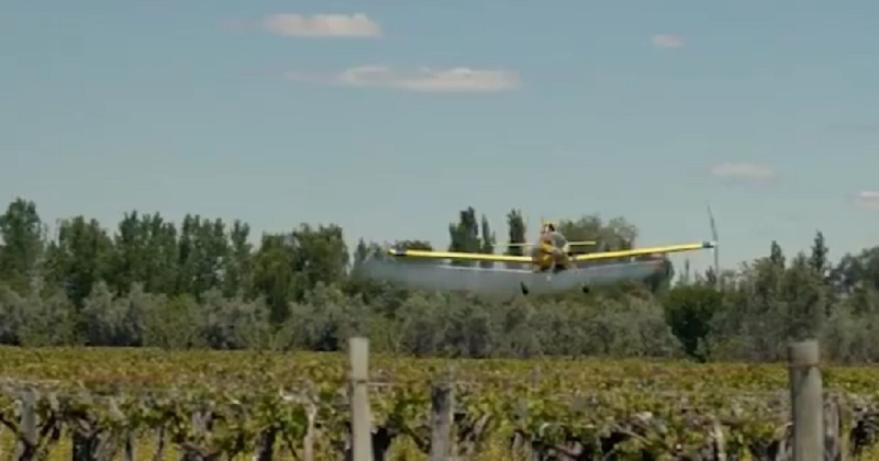 avion, insecticida