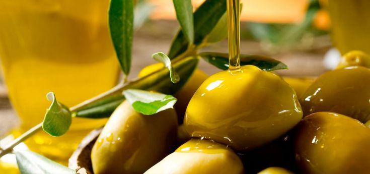 olivicolas, aceitunas